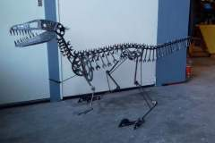 Raptor dinosaurus - COLNIC Design